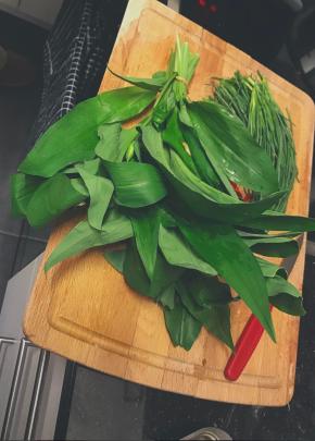 Wild Garlic/ Bärlauch /Ramsons