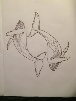 Whales – TattooDesign